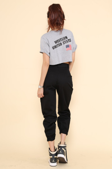 AMERICAN WEST CROP TEE (GREY) image